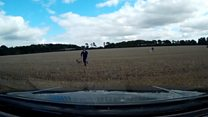 Hare coursing suspects caught red-handed