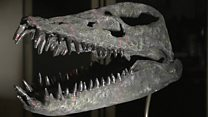 3D printing brings dinosaur fossils 'to life'.
