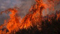 Wildfires ravage western US