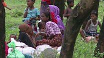 مجلس ایران درباره وضعیت مسلمانان روهینگیا تشکیل جلسه داد