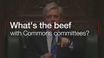 What's the beef with Commons committees?