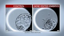 Gene editing human embryos