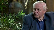 Attenborough on making Zoo Quest