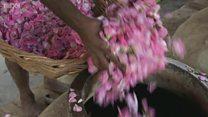 인도 향료공장들이 사라져가고 있다
