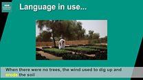 Урок англійської Lingohack: говоримо про довкілля