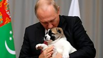 Putin given puppy by a president