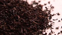 Trouble brews for Darjeeling tea