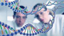ما هو ال DNA؟