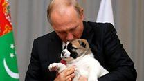 رئيس تركمانستان يهدي بوتين كلبا صغير في عيد ميلاده