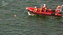 Guarda Costeira resgata cão encontrado sozinho em alto-mar na Escócia
