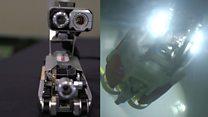The robots helping to clear up Fukushima