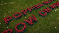Drone captures WWI poem spelt out in poppies