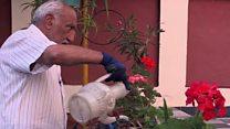 Як подружжя рятувало сад під час війни в Афганістані