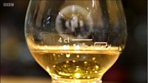 £8,000-a-dram whisky is fake