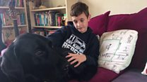 How dog helps boy with autism feel safe