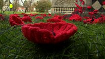 Knitters make 5,000 poppies for tribute