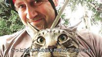 猫を助け降ろす人たち 米シアトルのとても高い木から