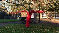 Crochet poppy trees honour World War One