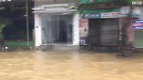 Typhoon Damrey caused extensive damage