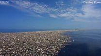 कॅरिबियन समुद्रावर प्लास्टिकचं साम्राज्य