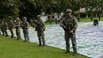Colombia seizes largest stash of cocaine ever