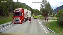 Un enfant évite de justesse un accident de camion