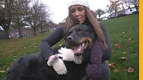 The dog foster carers helping domestic abuse victims