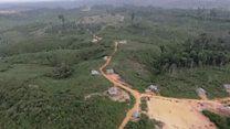 ဆီအုန်းကြောင့် ဒေသခံတွေ နေစရာပျောက်လာ