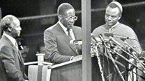 Mugabe: From war hero to resignation