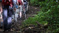 'How I led amputees up Mt Kilimanjaro'