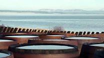 โรงกลั่นเหล้าใช้หอยนางรมบำบัดน้ำทะเลในสกอตแลนด์