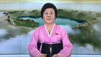 Кто эта женщина в розовом из теленовостей КНДР?