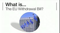 What is the EU Withdrawal Bill?