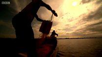Над озером Віторія нависла загроза екологічної катастрофи