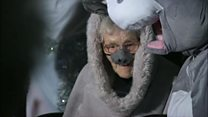 Woman, 98, plays donkey in nativity play