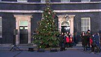 Farmer's Christmas tree outside No 10