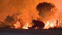 Man saves rabbit from US wildfires