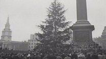 Trafalgar Square Christmas tree lit up