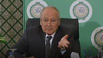 أبو الغيط: لا بديل لمبادرة السلام العربية