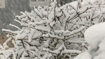 Heavy snow falls in the East of England