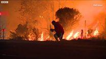 Калифорнийские пожары в цифрах