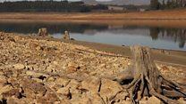 Le Cape Occidental en proie à la sècheresse