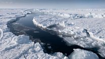 Warming Arctic the 'new normal'
