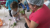 Alfabetização do paladar - como ensinar crianças a gostar de alimentos saudáveis