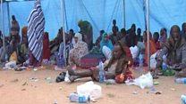 Oromo lagu eedeeyey inay Soomaali laayeen