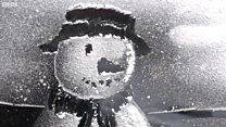 Thợ vẽ tranh tuyết