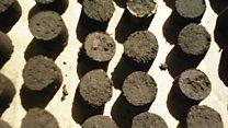 """Des étudiants nigériens inventent du """"charbon écologique"""""""