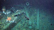 Подводный дрон нашел подлодку, затонувшую 100 лет назад