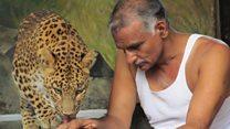 जंगली अनाथ प्राण्यांचा आधार डॉ. प्रकाश आमटे