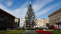 记者来鸿(粤语):罗马人对圣诞树的忿怨